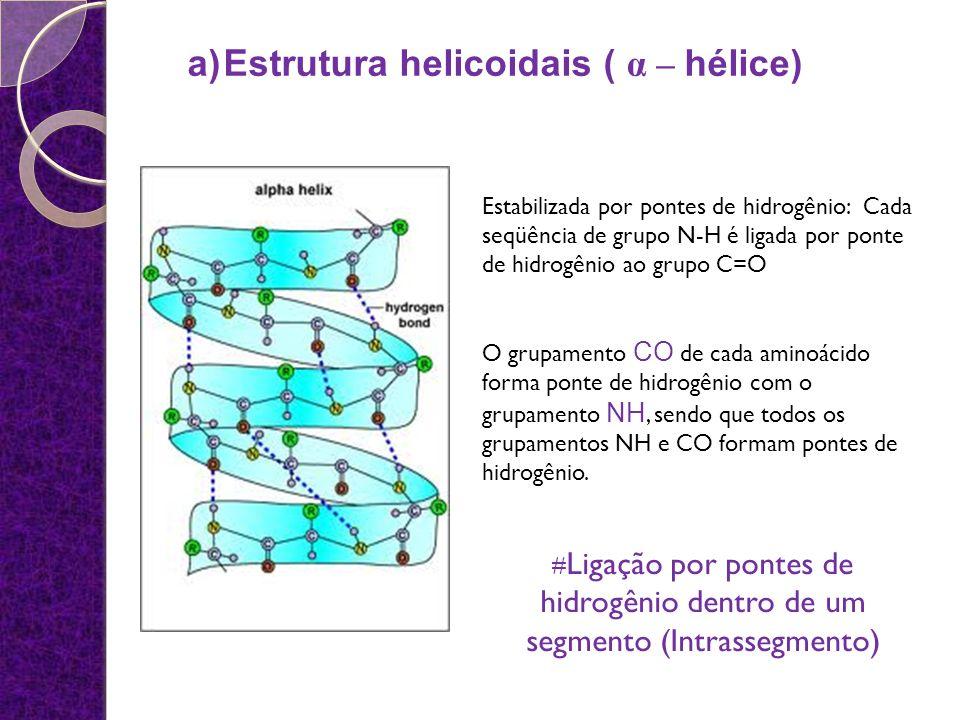 Estabilizada por pontes de hidrogênio: Cada seqüência de grupo N-H é ligada por ponte de hidrogênio ao grupo C=O O grupamento CO de cada aminoácido fo