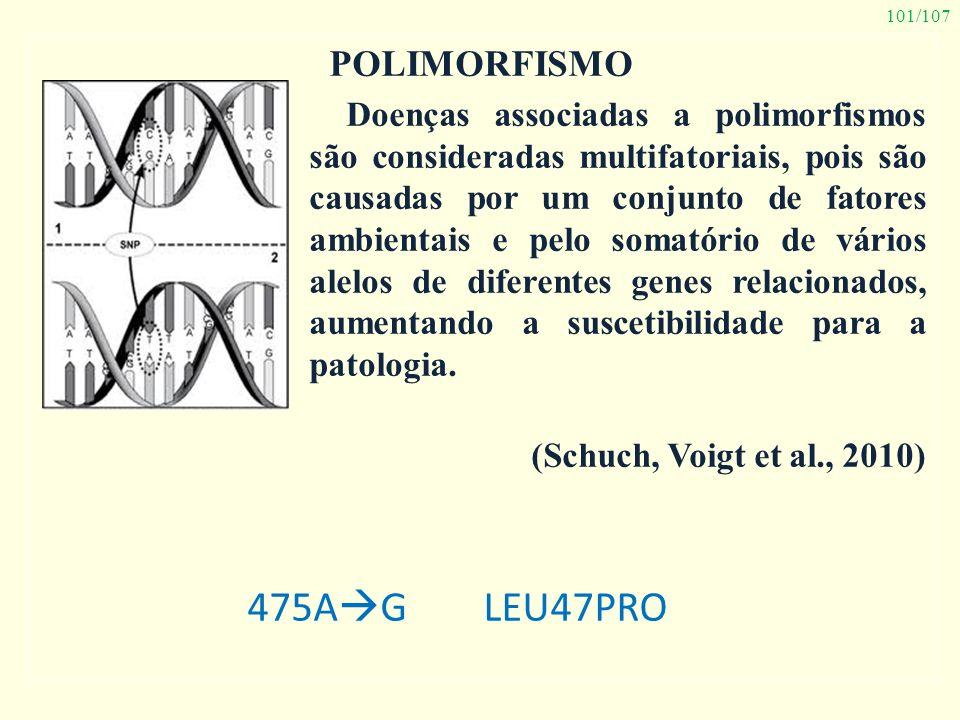 101/107 POLIMORFISMO Doenças associadas a polimorfismos são consideradas multifatoriais, pois são causadas por um conjunto de fatores ambientais e pel