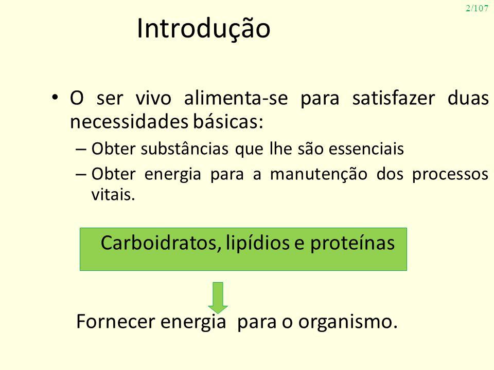 2/107 Introdução O ser vivo alimenta-se para satisfazer duas necessidades básicas: – Obter substâncias que lhe são essenciais – Obter energia para a m