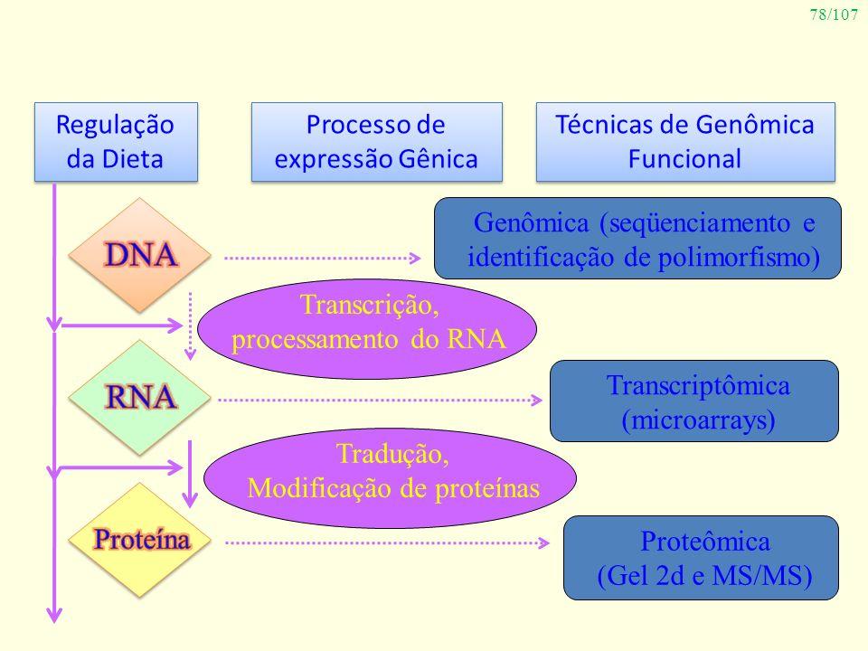78/107 Regulação da Dieta Regulação da Dieta Processo de expressão Gênica Técnicas de Genômica Funcional Genômica (seqüenciamento e identificação de p