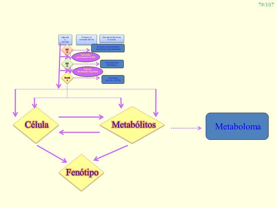 79/107 Regulaçã o da Dieta Regulaçã o da Dieta Processo de expressão Gênica Técnicas de Genômica Funcional Genômica (seqüenciamento e identificação de