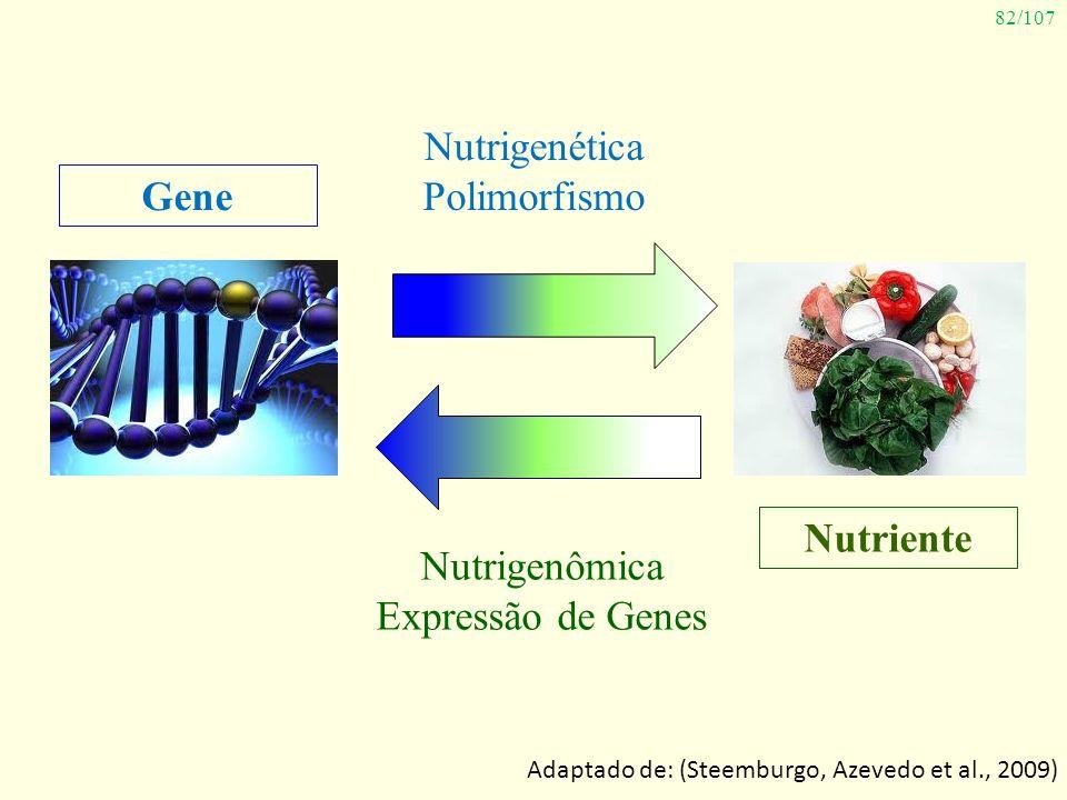 82/107 Gene Nutriente Nutrigenética Polimorfismo Nutrigenômica Expressão de Genes Adaptado de: (Steemburgo, Azevedo et al., 2009)