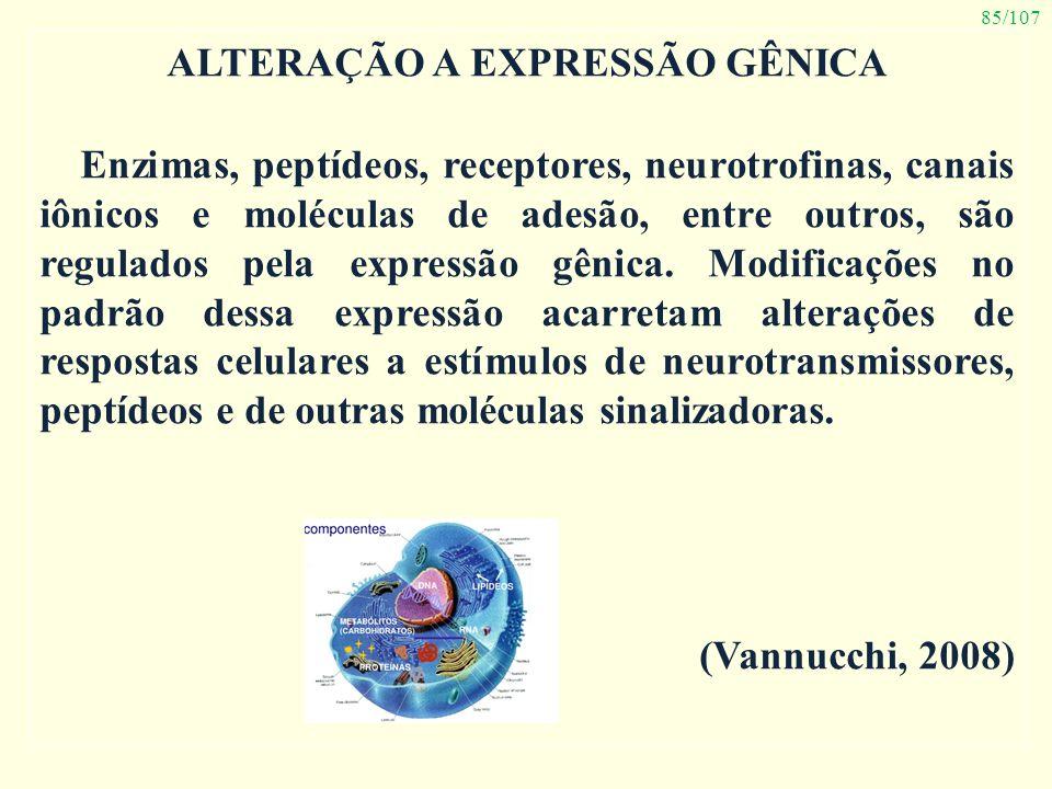 85/107 ALTERAÇÃO A EXPRESSÃO GÊNICA Enzimas, peptídeos, receptores, neurotrofinas, canais iônicos e moléculas de adesão, entre outros, são regulados p