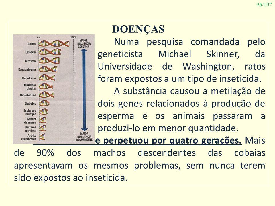 96/107 DOENÇAS Numa pesquisa comandada pelo geneticista Michael Skinner, da Universidade de Washington, ratos foram expostos a um tipo de inseticida.