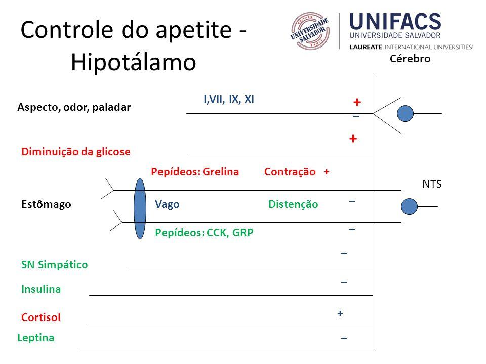 Controle do apetite - Hipotálamo Aspecto, odor, paladar I,VII, IX, XI Diminuição da glicose + _ Cérebro EstômagoVago NTS Contração + + Distenção _ SN