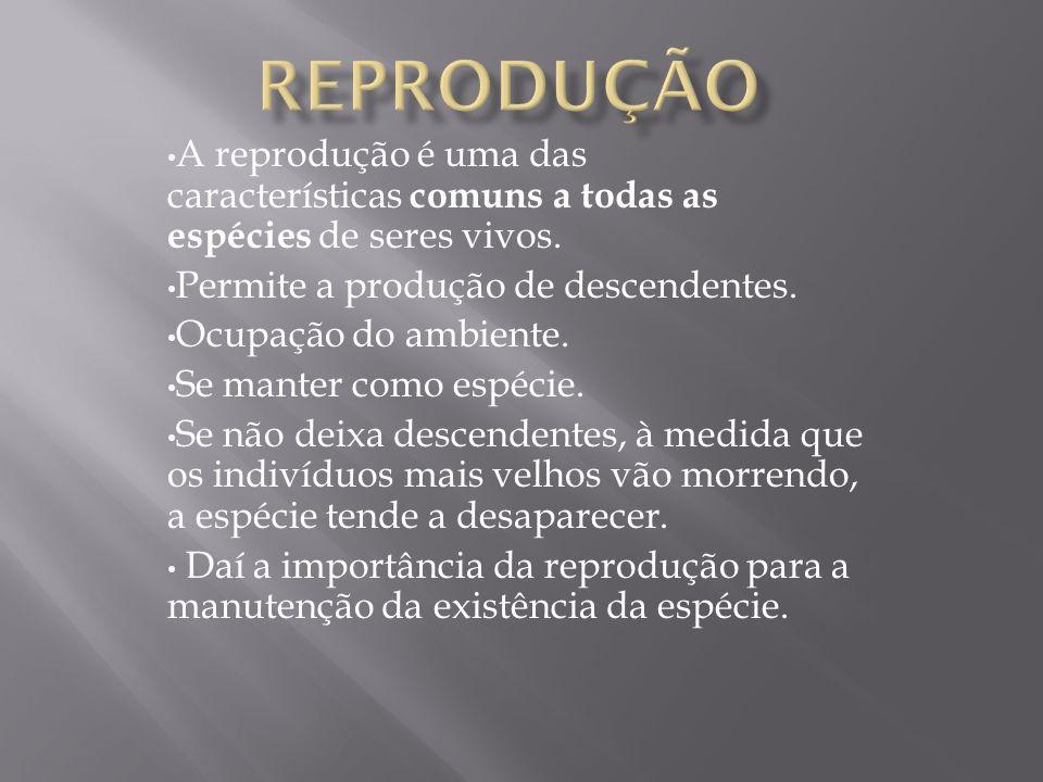A reprodução é uma das características comuns a todas as espécies de seres vivos. Permite a produção de descendentes. Ocupação do ambiente. Se manter