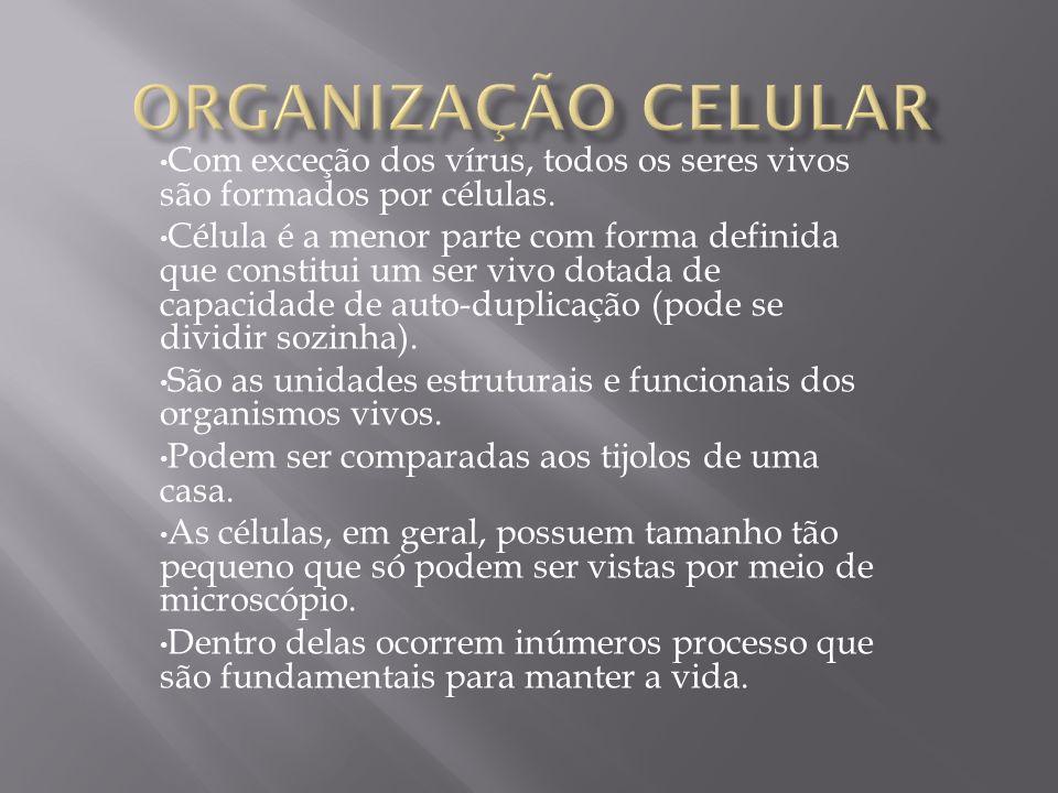 Com exceção dos vírus, todos os seres vivos são formados por células. Célula é a menor parte com forma definida que constitui um ser vivo dotada de ca