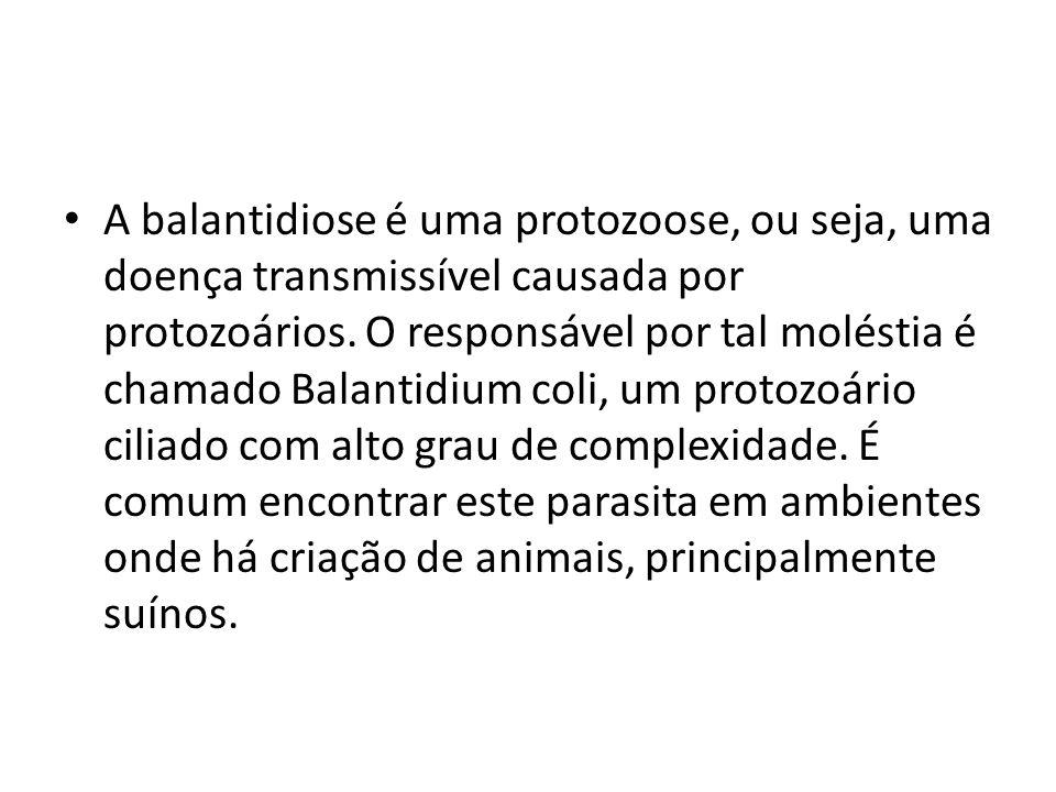 A balantidiose é uma protozoose, ou seja, uma doença transmissível causada por protozoários. O responsável por tal moléstia é chamado Balantidium coli