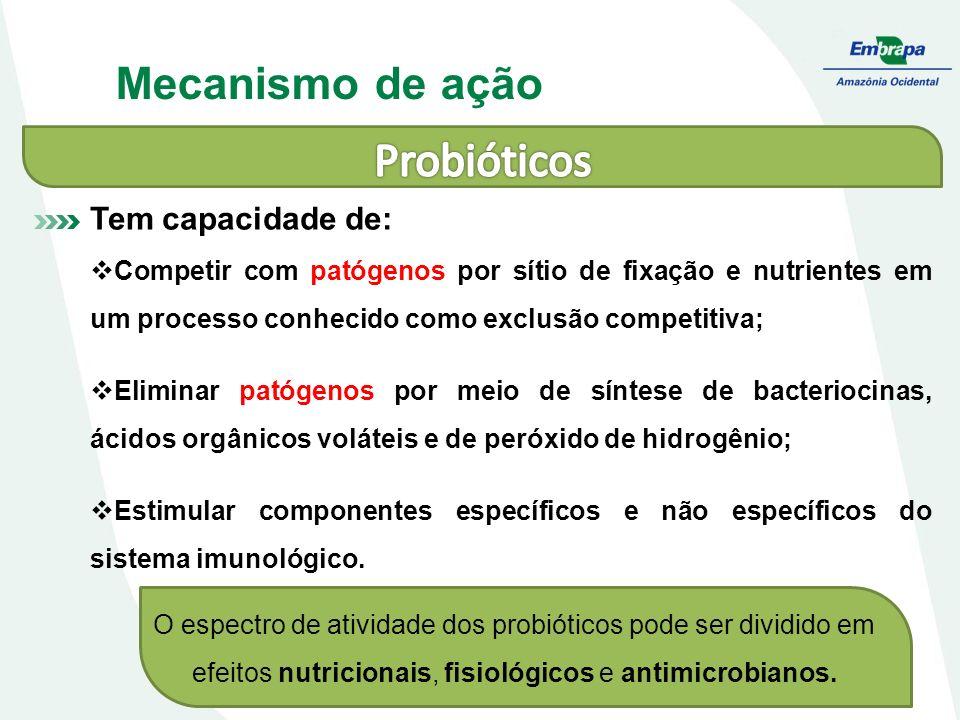 Mecanismo de ação Tem capacidade de: Competir com patógenos por sítio de fixação e nutrientes em um processo conhecido como exclusão competitiva; Eliminar patógenos por meio de síntese de bacteriocinas, ácidos orgânicos voláteis e de peróxido de hidrogênio; Estimular componentes específicos e não específicos do sistema imunológico.