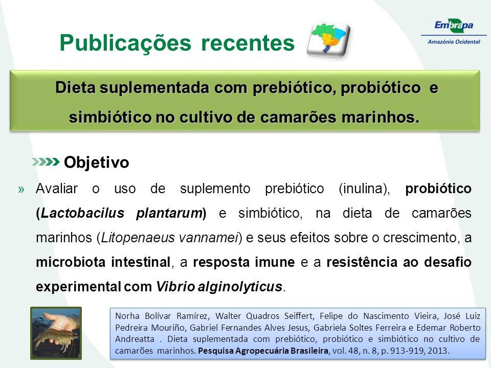 Publicações recentes Objetivo »Avaliar o uso de suplemento prebiótico (inulina), probiótico (Lactobacilus plantarum) e simbiótico, na dieta de camarões marinhos (Litopenaeus vannamei) e seus efeitos sobre o crescimento, a microbiota intestinal, a resposta imune e a resistência ao desafio experimental com Vibrio alginolyticus.