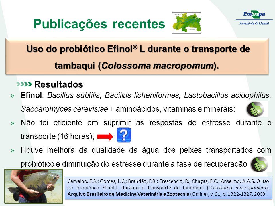 Publicações recentes Uso do probiótico Efinol ® L durante o transporte de tambaqui (Colossoma macropomum).