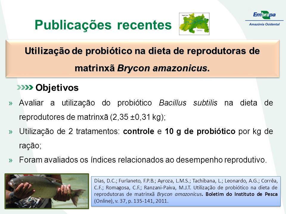 Publicações recentes Utilização de probiótico na dieta de reprodutoras de matrinxã Brycon amazonicus. Dias, D.C.; Furlaneto, F.P.B.; Ayroza, L.M.S.; T