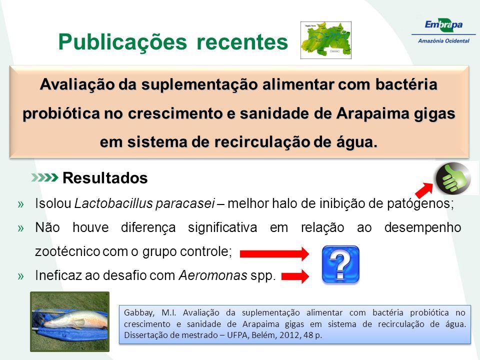 Publicações recentes Avaliação da suplementação alimentar com bactéria probiótica no crescimento e sanidade de Arapaima gigas em sistema de recirculação de água.
