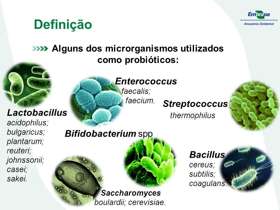 Alguns dos microrganismos utilizados como probióticos: Lactobacillus acidophilus; bulgaricus; plantarum; reuteri; johnssonii; casei; sakei. Streptococ