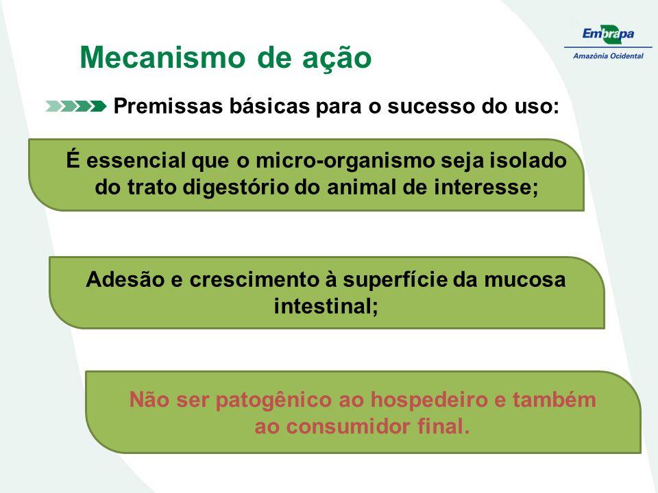 Premissas básicas para o sucesso do uso: Adesão e crescimento à superfície da mucosa intestinal; Não ser patogênico ao hospedeiro e também ao consumidor final.
