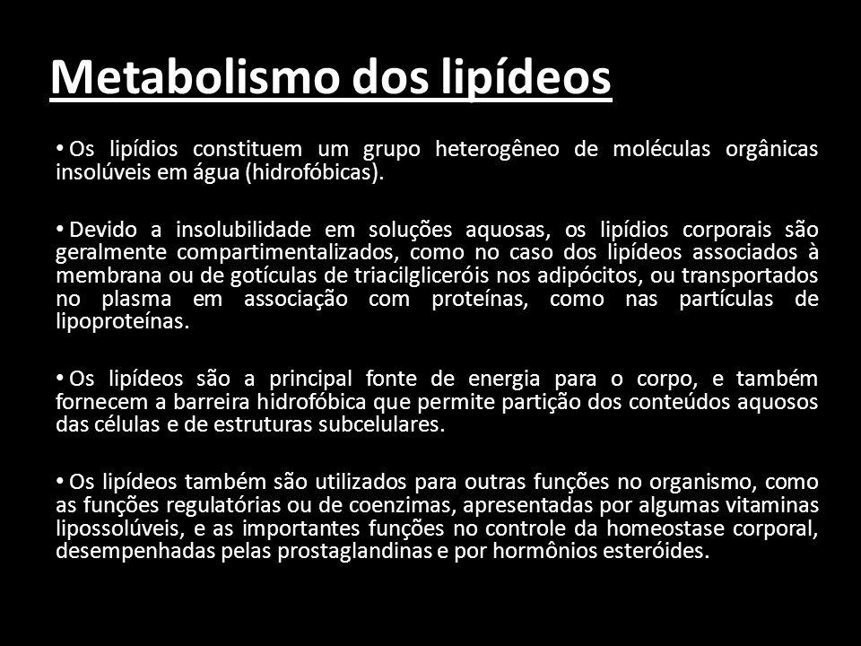 Metabolismo dos lipídeos Os lipídios constituem um grupo heterogêneo de moléculas orgânicas insolúveis em água (hidrofóbicas). Devido a insolubilidade