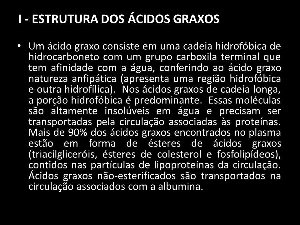 I - ESTRUTURA DOS ÁCIDOS GRAXOS Um ácido graxo consiste em uma cadeia hidrofóbica de hidrocarboneto com um grupo carboxila terminal que tem afinidade