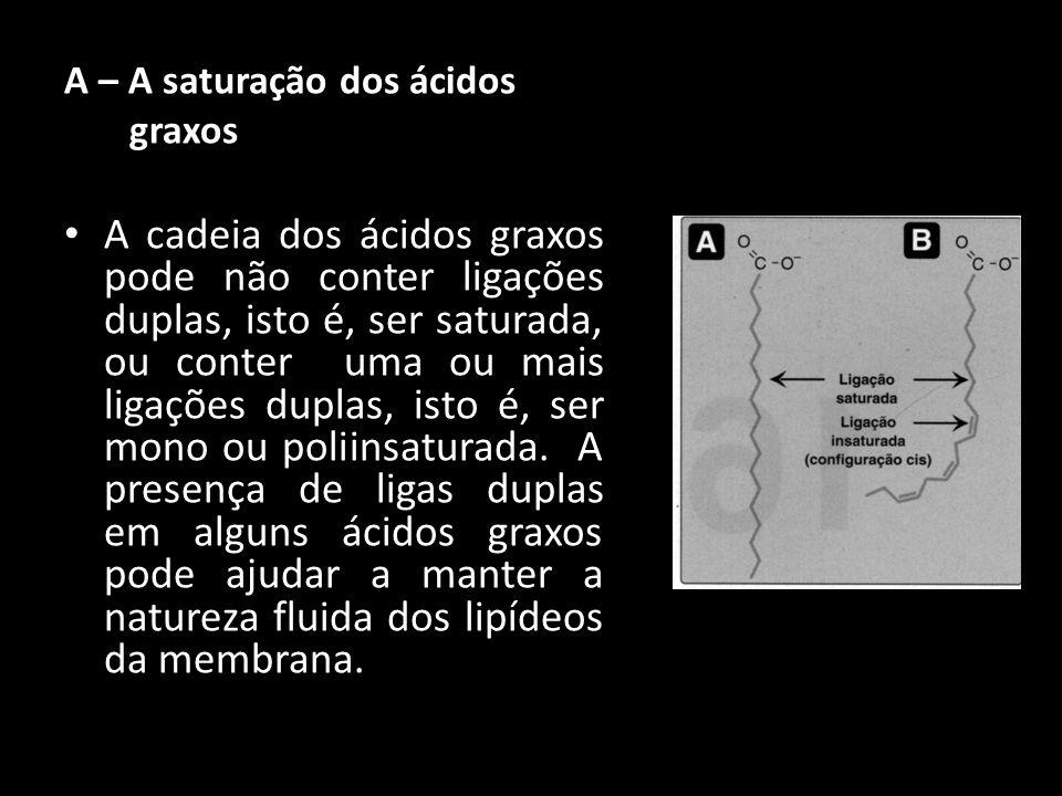 A – A saturação dos ácidos graxos A cadeia dos ácidos graxos pode não conter ligações duplas, isto é, ser saturada, ou conter uma ou mais ligações dup
