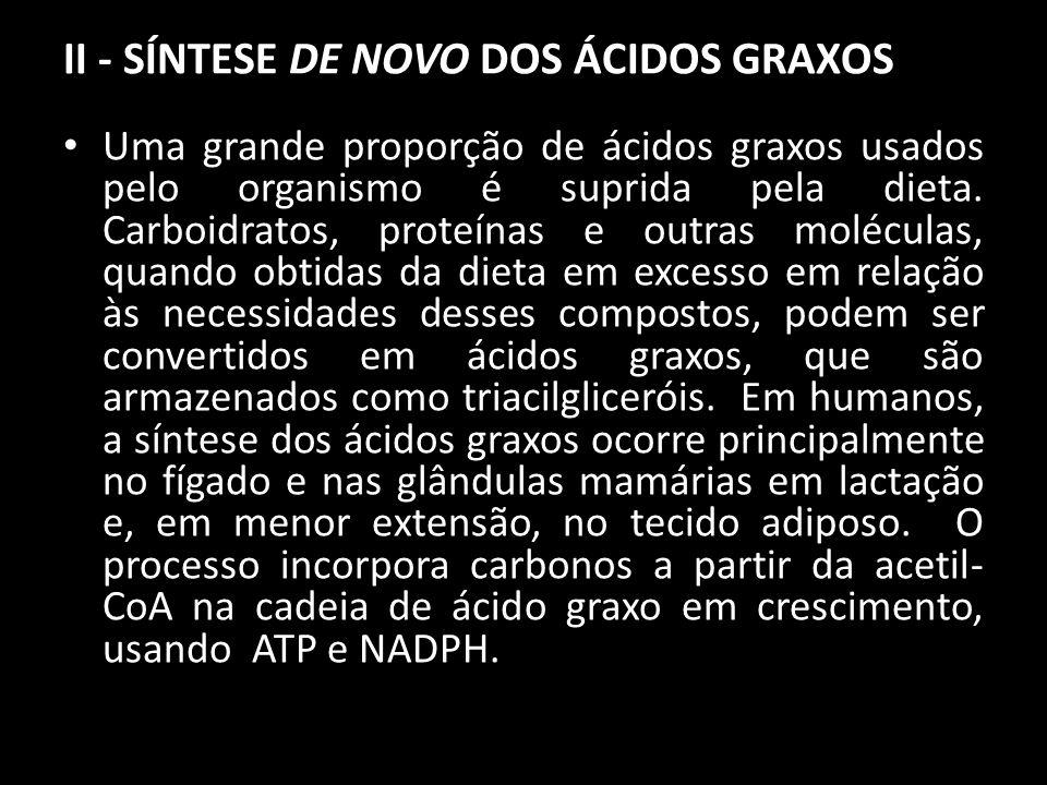 II - SÍNTESE DE NOVO DOS ÁCIDOS GRAXOS Uma grande proporção de ácidos graxos usados pelo organismo é suprida pela dieta. Carboidratos, proteínas e out