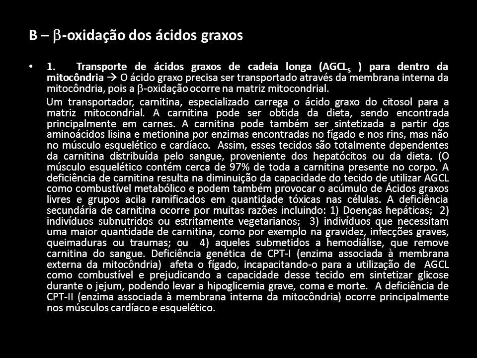 B – -oxidação dos ácidos graxos 1. Transporte de ácidos graxos de cadeia longa (AGCL S ) para dentro da mitocôndria O ácido graxo precisa ser transpor