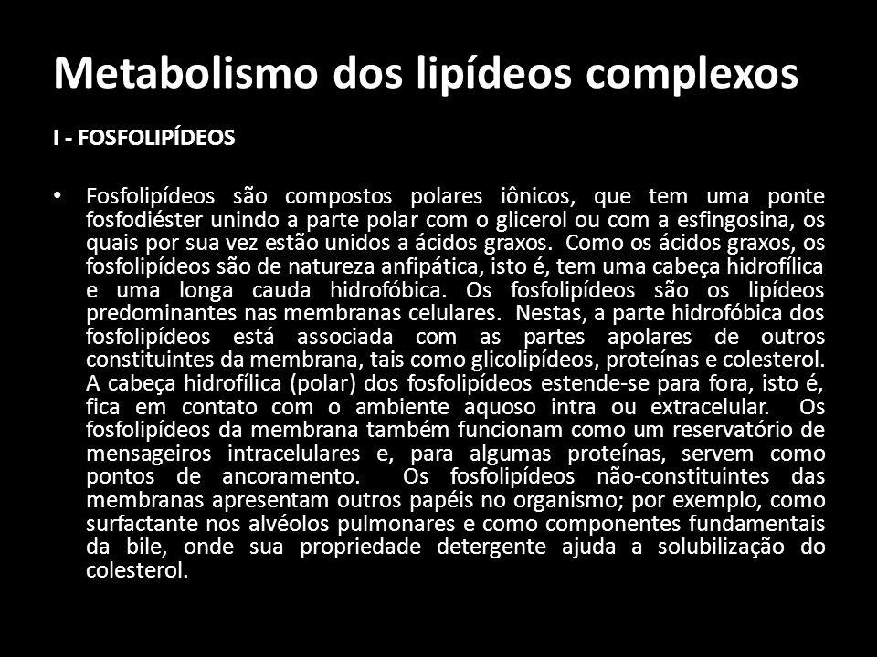 Metabolismo dos lipídeos complexos I - FOSFOLIPÍDEOS Fosfolipídeos são compostos polares iônicos, que tem uma ponte fosfodiéster unindo a parte polar