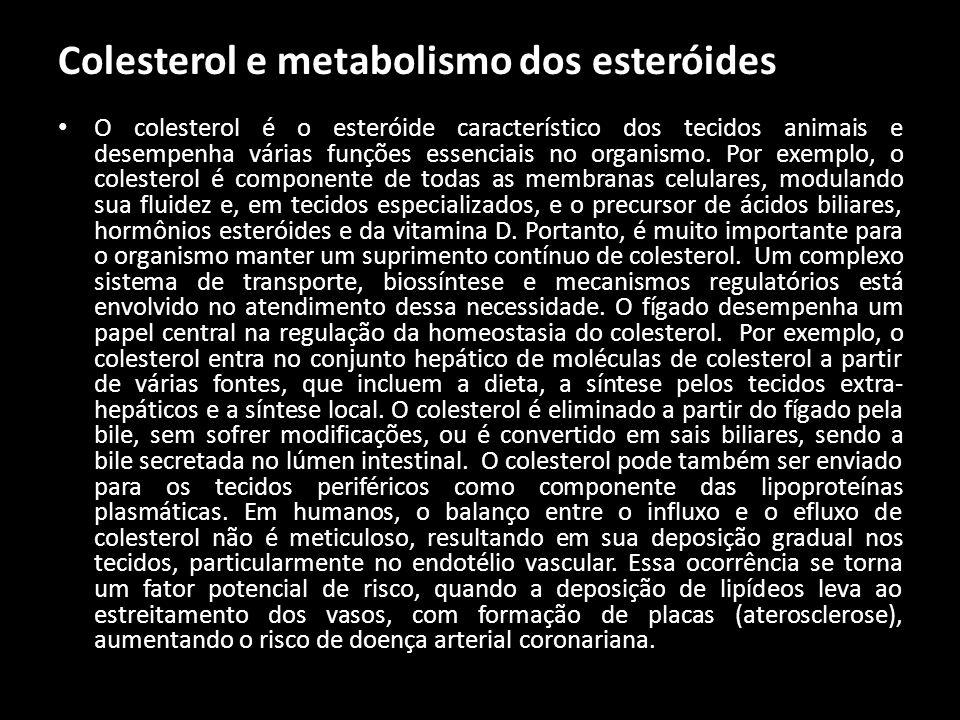 Colesterol e metabolismo dos esteróides O colesterol é o esteróide característico dos tecidos animais e desempenha várias funções essenciais no organi