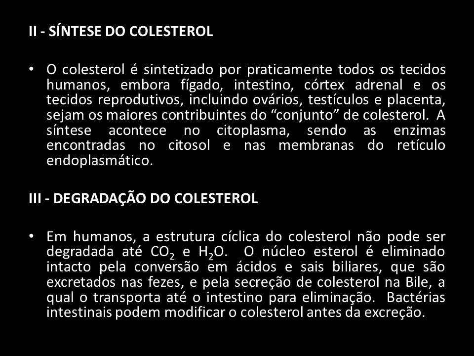 II - SÍNTESE DO COLESTEROL O colesterol é sintetizado por praticamente todos os tecidos humanos, embora fígado, intestino, córtex adrenal e os tecidos
