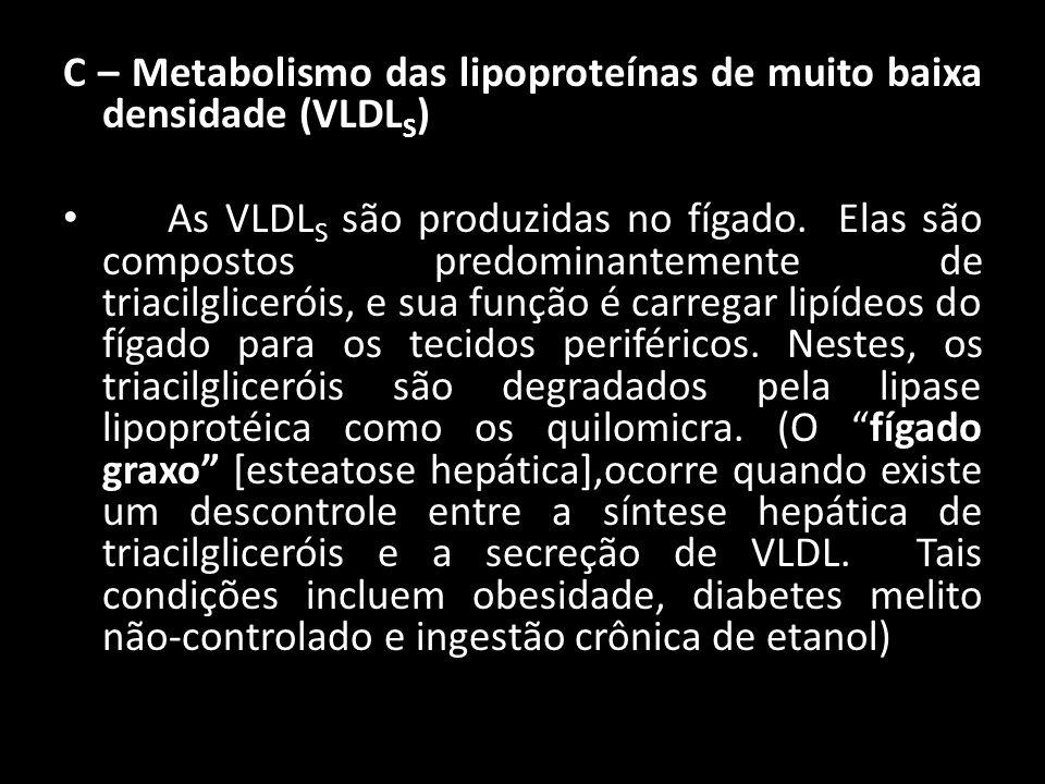 C – Metabolismo das lipoproteínas de muito baixa densidade (VLDL S ) As VLDL S são produzidas no fígado. Elas são compostos predominantemente de triac