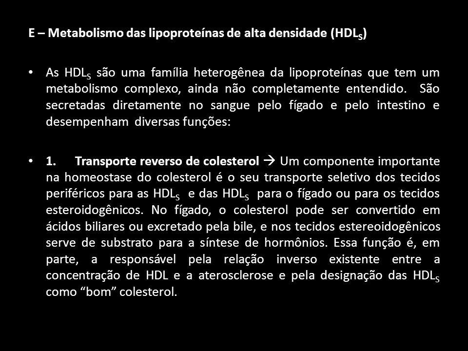 E – Metabolismo das lipoproteínas de alta densidade (HDL S ) As HDL S são uma família heterogênea da lipoproteínas que tem um metabolismo complexo, ai