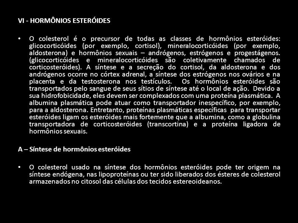 VI - HORMÔNIOS ESTERÓIDES O colesterol é o precursor de todas as classes de hormônios esteróides: glicocorticóides (por exemplo, cortisol), mineraloco