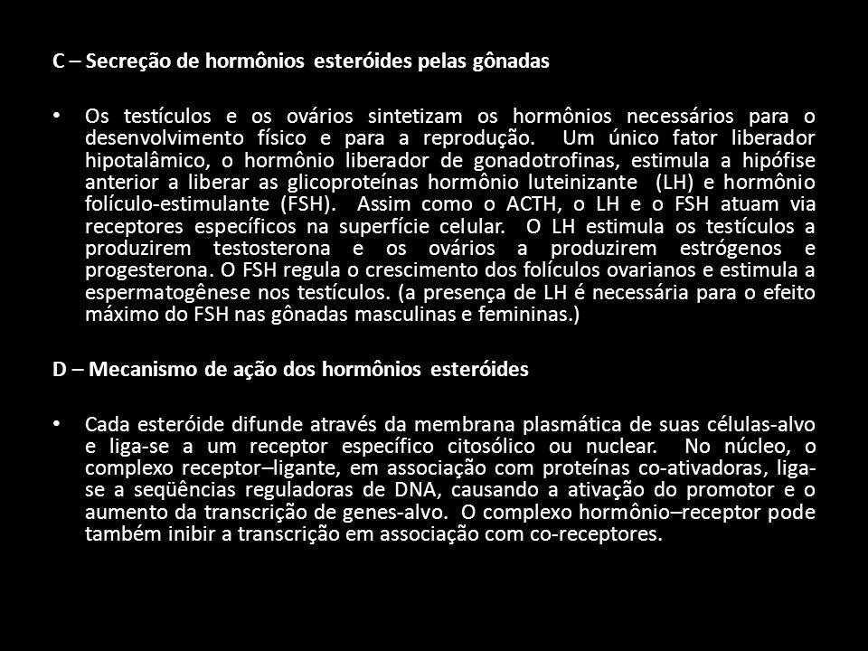 C – Secreção de hormônios esteróides pelas gônadas Os testículos e os ovários sintetizam os hormônios necessários para o desenvolvimento físico e para