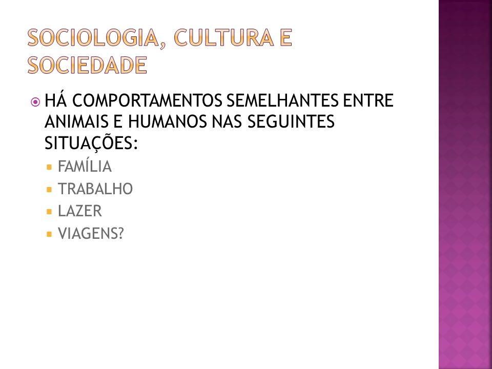 HÁ COMPORTAMENTOS SEMELHANTES ENTRE ANIMAIS E HUMANOS NAS SEGUINTES SITUAÇÕES: FAMÍLIA TRABALHO LAZER VIAGENS?