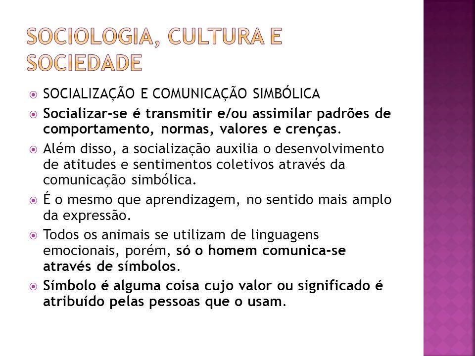 SOCIALIZAÇÃO E COMUNICAÇÃO SIMBÓLICA Socializar-se é transmitir e/ou assimilar padrões de comportamento, normas, valores e crenças. Além disso, a soci