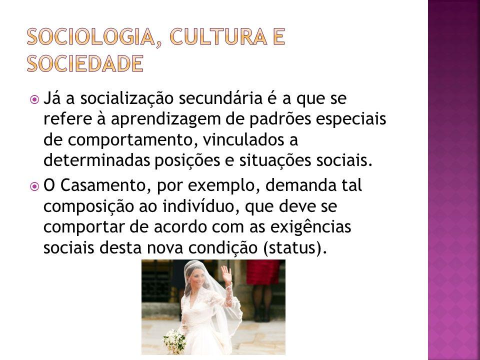 Já a socialização secundária é a que se refere à aprendizagem de padrões especiais de comportamento, vinculados a determinadas posições e situações so