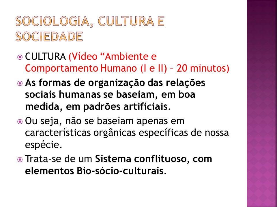 CULTURA (Vídeo Ambiente e Comportamento Humano (I e II) – 20 minutos) As formas de organização das relações sociais humanas se baseiam, em boa medida,
