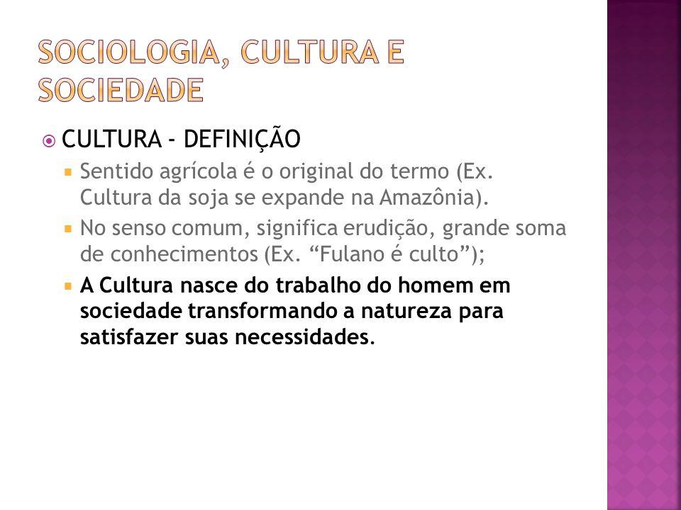 CULTURA - DEFINIÇÃO Sentido agrícola é o original do termo (Ex. Cultura da soja se expande na Amazônia). No senso comum, significa erudição, grande so