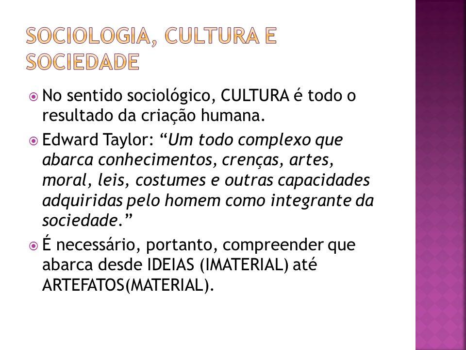 No sentido sociológico, CULTURA é todo o resultado da criação humana. Edward Taylor: Um todo complexo que abarca conhecimentos, crenças, artes, moral,