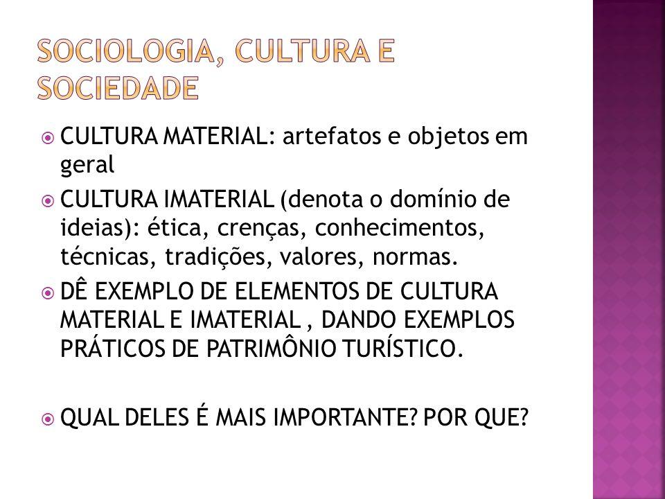 CULTURA MATERIAL: artefatos e objetos em geral CULTURA IMATERIAL (denota o domínio de ideias): ética, crenças, conhecimentos, técnicas, tradições, val