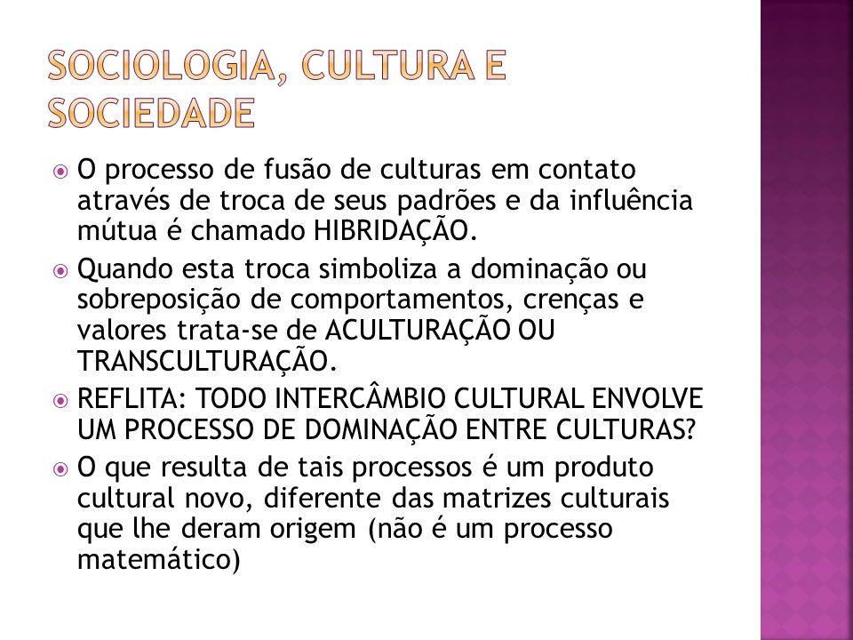 O processo de fusão de culturas em contato através de troca de seus padrões e da influência mútua é chamado HIBRIDAÇÃO. Quando esta troca simboliza a