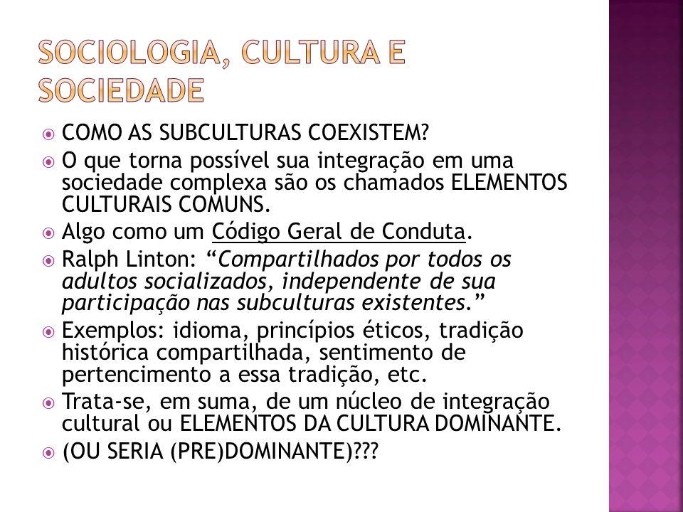 COMO AS SUBCULTURAS COEXISTEM? O que torna possível sua integração em uma sociedade complexa são os chamados ELEMENTOS CULTURAIS COMUNS. Algo como um