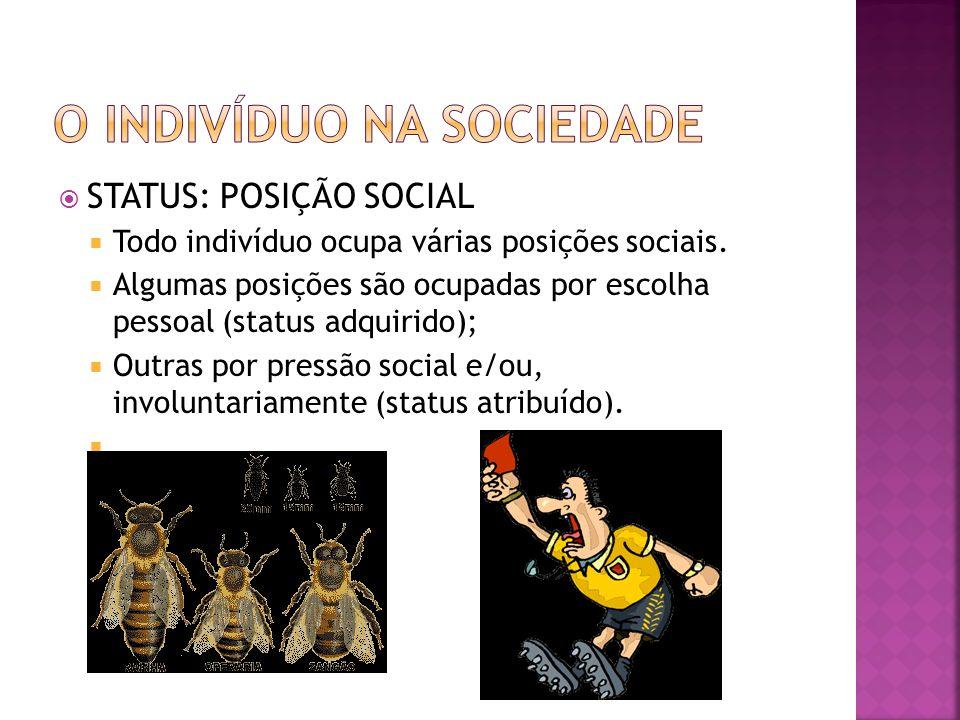 STATUS: POSIÇÃO SOCIAL Todo indivíduo ocupa várias posições sociais. Algumas posições são ocupadas por escolha pessoal (status adquirido); Outras por