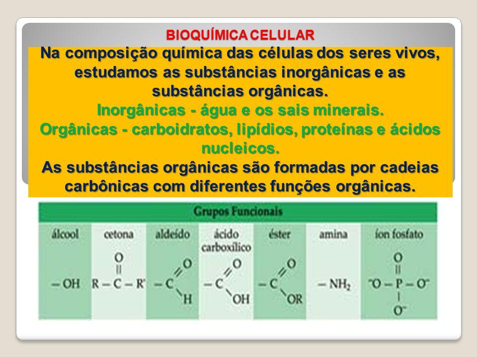 BIOQUÍMICA CELULAR Na composição química das células dos seres vivos, estudamos as substâncias inorgânicas e as substâncias orgânicas. Inorgânicas - á