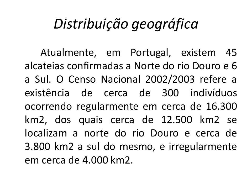 Distribuição geográfica Atualmente, em Portugal, existem 45 alcateias confirmadas a Norte do rio Douro e 6 a Sul. O Censo Nacional 2002/2003 refere a