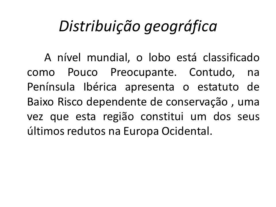 Distribuição geográfica A nível mundial, o lobo está classificado como Pouco Preocupante. Contudo, na Península Ibérica apresenta o estatuto de Baixo