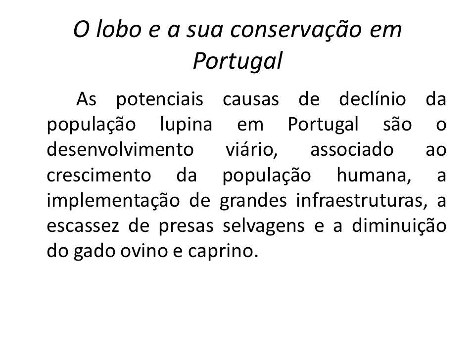 O lobo e a sua conservação em Portugal As potenciais causas de declínio da população lupina em Portugal são o desenvolvimento viário, associado ao cre