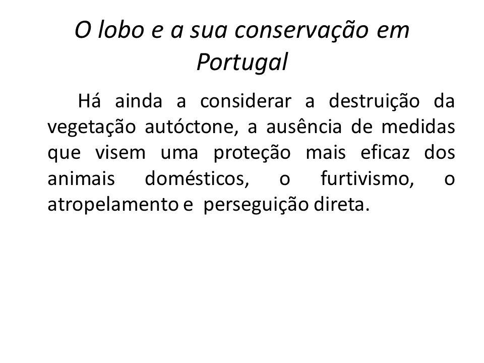 O lobo e a sua conservação em Portugal Há ainda a considerar a destruição da vegetação autóctone, a ausência de medidas que visem uma proteção mais ef