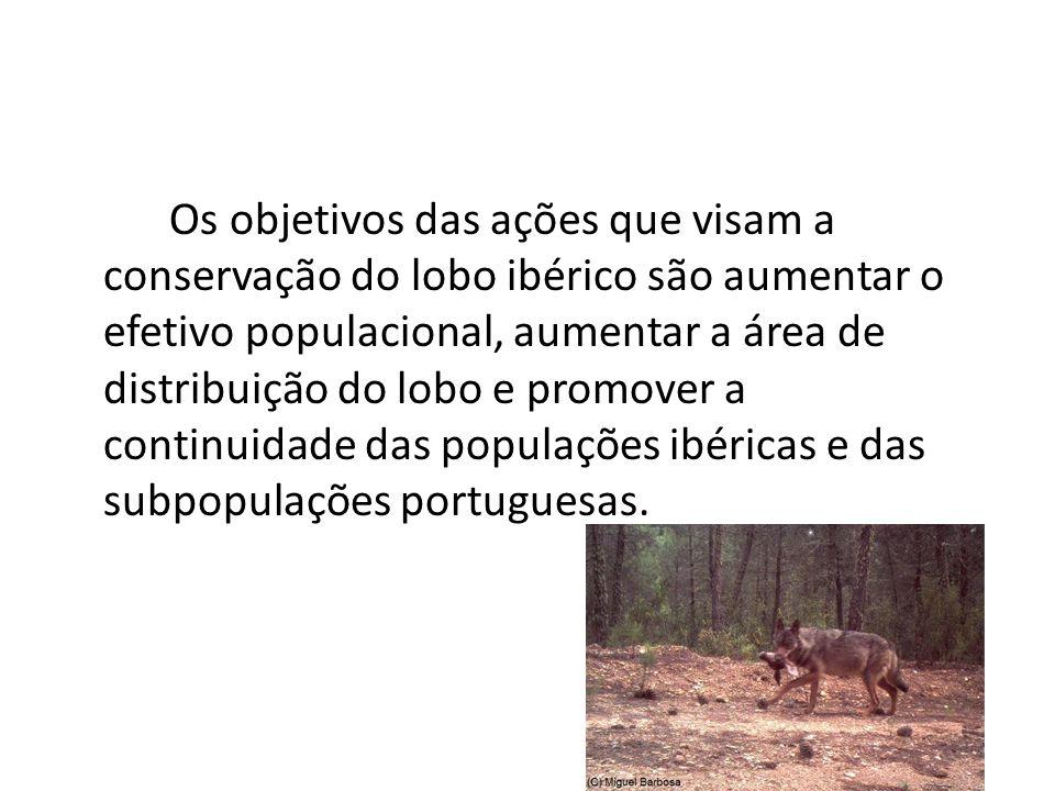Os objetivos das ações que visam a conservação do lobo ibérico são aumentar o efetivo populacional, aumentar a área de distribuição do lobo e promover