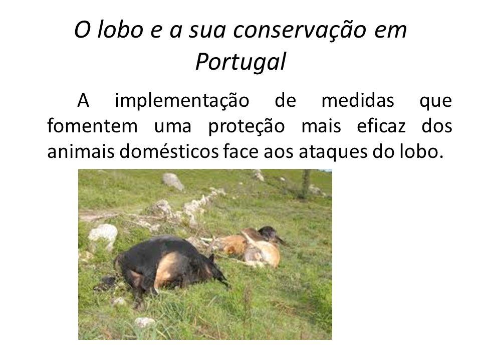 O lobo e a sua conservação em Portugal A monitorização regular da população, a implementação de medidas de gestão do habitat, a conservação e fomento das presas naturais do lobo e o desenvolvimento de ações de divulgação, sensibilização e formação.
