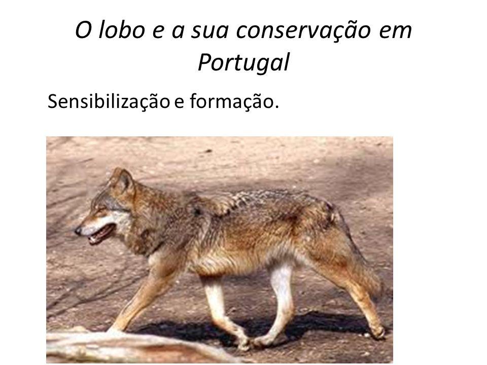 O lobo e a sua conservação em Portugal Sensibilização e formação.