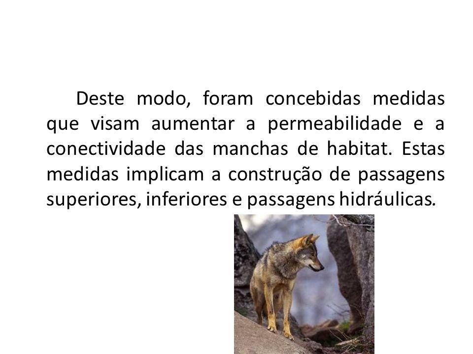 Deste modo, foram concebidas medidas que visam aumentar a permeabilidade e a conectividade das manchas de habitat. Estas medidas implicam a construção